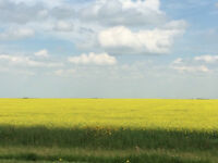 VERY HIGH ASSESSED SASKATCHEWAN FARMLAND 6% RETURN