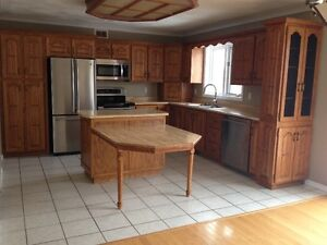 Kitchen cabinets, counter and more!