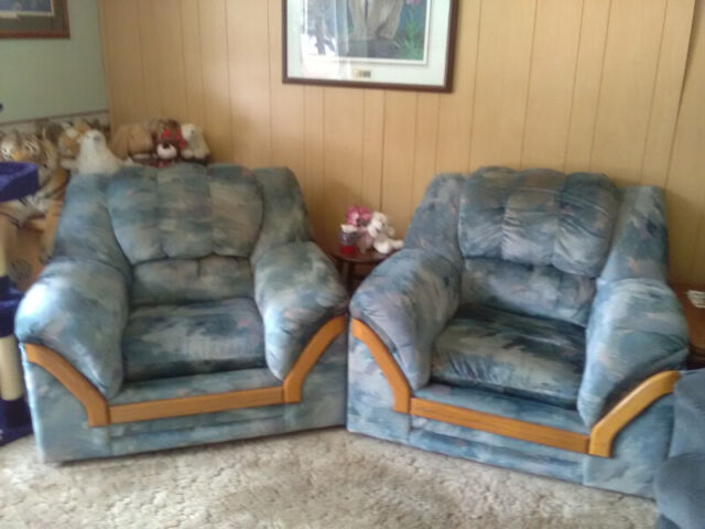 Comfy Living Room Chairs | Chairs & Recliners | Cranbrook ...