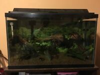 35 Gallon Fish tank, full set up