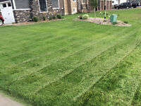 Lawn and garden maintenance services for 2017