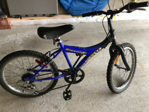 Blue Kids Mountain Bike