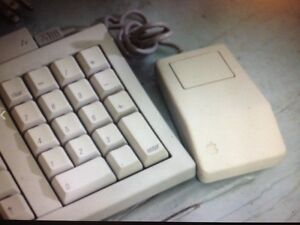 Look for Macintosh Classic keyboard / mouse