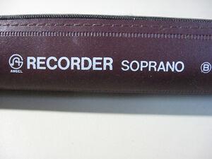 Angle Star woodwind Flute pipe Recorder Soprano. School Flute Cambridge Kitchener Area image 4