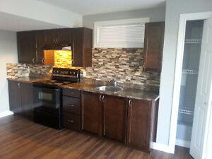 Walkout basement for rent in Coventry Hills (Utilities Included)