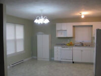 Centrally located 3 bedroom duplex avail July 1st, close to UdeM