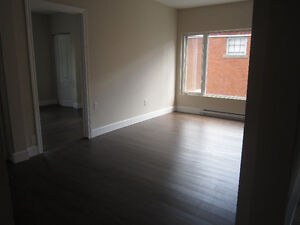 DOWNTOWN- renovated, quiet building- walk to U de M
