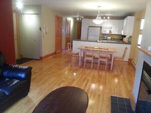 5 1/2 - meublé/furnished Plateau/Mile-End a cote Metro Laurier