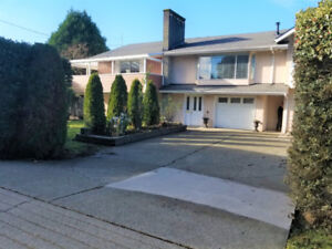 Newly Renovated 2 Level Family Home!