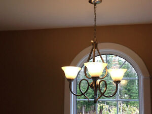 Reduced: Chandelier & Ceiling light