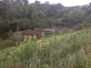Nature Campground
