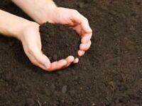 Organic Top Soil Screened