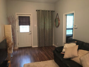 1-bedroom, pet-friendly house for rent in North St Boniface