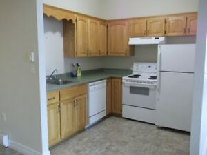 DOWNTOWN ST. STEPHEN - VERY LARGE BRIGHT 2BR - GREAT VIEWS