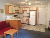 A fully furnished 3 1/2 in downtown for rent now at $850.00.