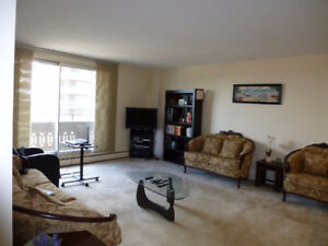 Hight rise condominium shared accommodation: Quiet, Quality and
