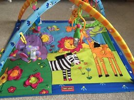 """Lights & Music"" Baby Play Activity Gym"