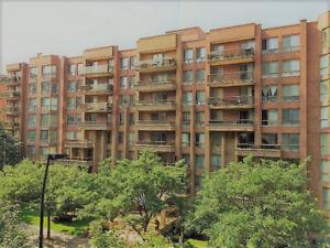 Condo à Centre-Ville/Condo in Downtown for rent
