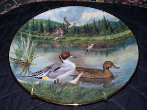 """""""KNOWLES"""" CHINA """"THE PINTAIL"""" COLLECTOR PLATE Kawartha Lakes Peterborough Area image 1"""