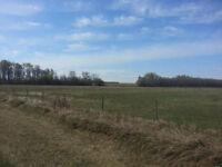 151 Acres 30 kms from Grande Prairie