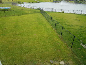 5 ft black chain link fence