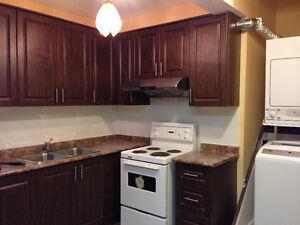 Yonge/Finch Bachelor Basement Apartment