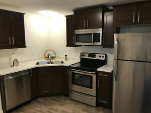 Like NEW! Modern Furnished Bachelor in Harbour Landing