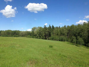 Beautiful Lot for Sale in Parkland County *JUST REDUCED*