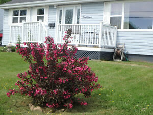 OPEN HOUSE Sunday Jun. 18th 2 - 4 p.m. Bungalow in Dartmouth