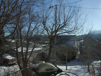 Home in the Crowsnest Pass, November 1st or sooner.