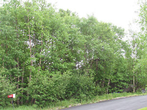 26-28 CROSS MEADOW, I ACRE BOREAL FOREST...CBS. St. John's Newfoundland image 5
