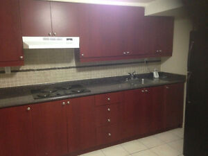 Clean Independent Basement for RentSep/15/16 for Rent in Markham