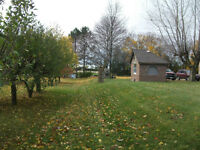 country home, minutes from beach and Sarnia
