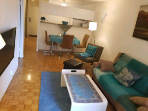 Elegant Fully-furnished one bedroom Apt, COLLAGE station 120/ngt