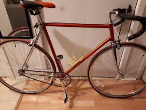 Velo fixed gear