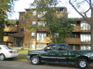 GREAT LOCATION! 1 Bedroom Apartment Available For May 1