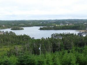 Wow! best deal east of Whitbourne for newer cottage! St. John's Newfoundland image 4