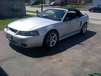 2001 Ford SVT Mustang Convertible