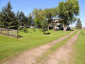 Cutest country charm on 5 acres Strathcona County Edmonton Area image 3