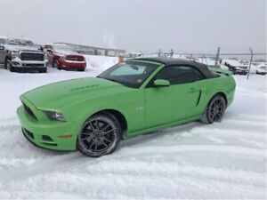 2014 Ford Mustang GT -COLOR-Mint-Spring READY!