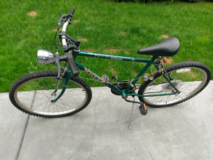 Adult bike, tires need replacement