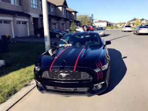 2017 Ford Mustang Eocoboost Lease Takeover !!!