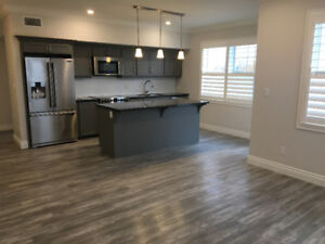 Brand New Apartment Condo Available for Lease in Caledonia!