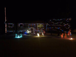 Looking for LED christmas lights