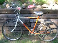 Pair of bikes