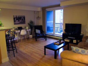 Beautiful Apartment in Downtown Halifax