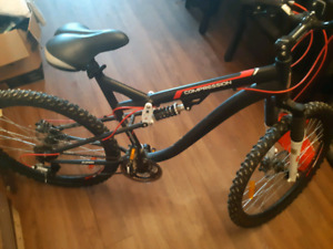 Double disc brake for sale