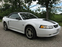 1999 Ford Mustang GT Convertible 35th Anniversary Limited Editio