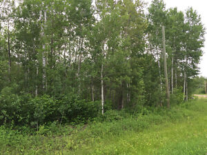 Building lot backing onto Granite Hills Golf Course