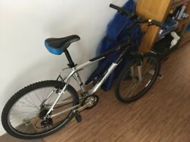 Bike Adult